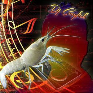 "Dj.Crayfish-moje momentky""90!"