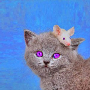 Die Katze aus Duisburg Nr. 10 w/ Michi Maus