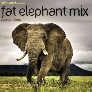 Fat elephant mix - (tek kuduro minimal dubstep break) mixed by metrog - may 2011 - FREE DOWNLOAD