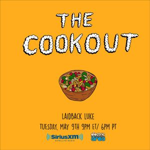 The Cookout 046: Laidback Luke