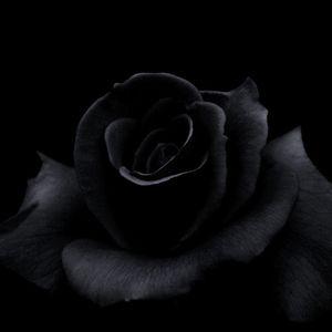 Eurobeat Radio Blackrose Sessions Vol. 4 Deeper and Deeper Miss Natasha 78