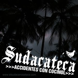 SUDACATECA >Accidentes con Cocinol<