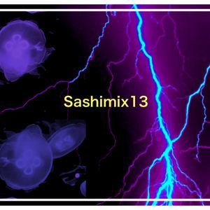 Sashimix13