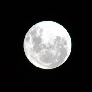 Make a wish to the moon..