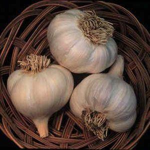 GarlicAssSuperMix
