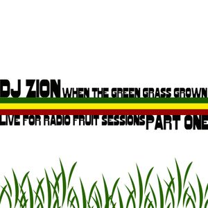 djZION live for radio Fruit Sessions part ONE