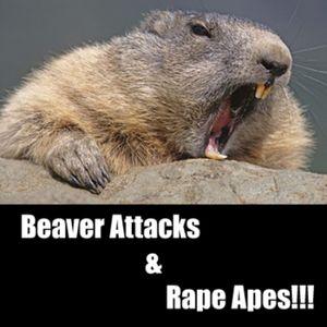 Episode 11 - Beaver Attacks and Rape Apes!!!