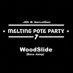 Melting Pote Party #7 / Mixed by Woodslide