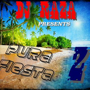 PURA FIESTA 2 salsa edition