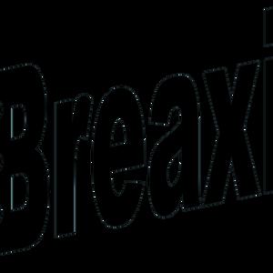 Breaxity 14.05.2021 Goony-Mèche-Black Francis-Re:nald-
