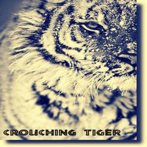Crouching Tiger - Deep Sensation Sessions 27/06/2015