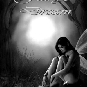 FAIRY'S DREAM(CRAZY FEELINGS)