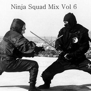 Ninja Squad Mix Vol. 6