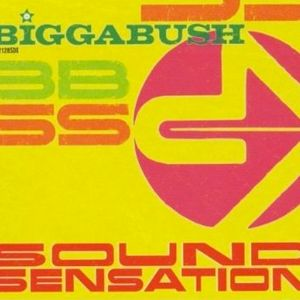 BiggaBush Mix November 2011