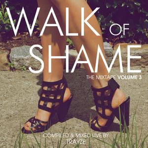 Walk of Shame - The Mixtape - Volume Three by DJ TRAYZE