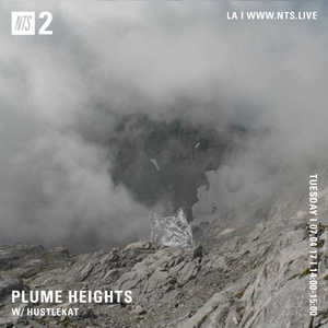 Plume Heights w/ Hustlekat - 4th July 2017