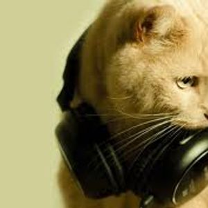 djCat - Feel the Party