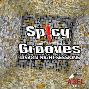 ZEZATI @ SPICY GROOVES PODCAST #13