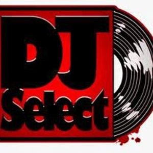 DjSelect - Shake It Whoomp