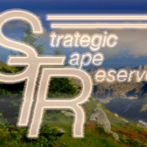 Strategic Tape Reserve 2017 Mix