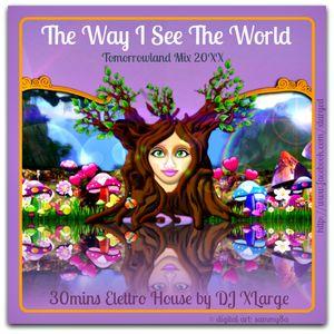 DJ XLarge - The Way I See The World (Tomorrowland Mix 20XX by DJ XLarge)