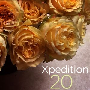 Xpedition Mix 20