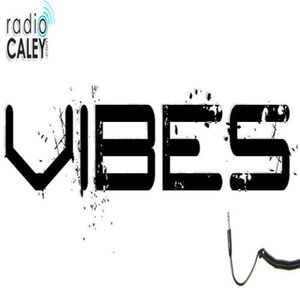 Vibes Best of 2013 Podcast Thursday from 20.00 www.radiocaley.com