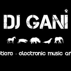 dj gani weekend mix 1