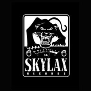 Melodymann presents Skylax label mix