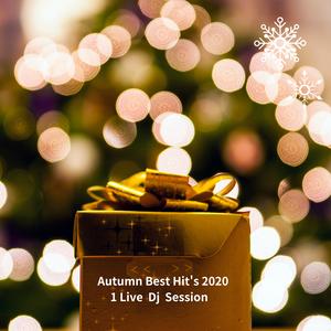 Autumn Best Hit's 2020/Marshumello,Zedd,David Guetta,Jonas Blue,Coldplay,Halsey/1 Live Dj Session