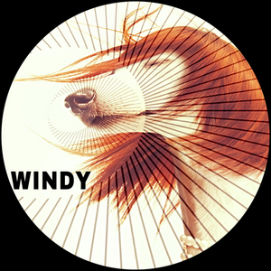 WINDY - DJ VIS