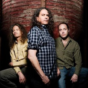 #263 - Meat Puppets