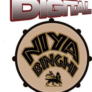Digital Niya Binghi feat: The Ragga Twins & Junior Dangerous