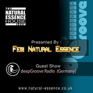 The Natural Essence House Show Episode 161 - DeepGroove Radio Show