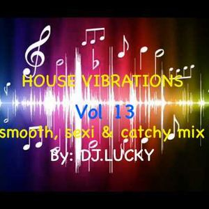 HOUSE VIBRATIONS VOL 13 - SMOOTH & SEXI PARTY MIX