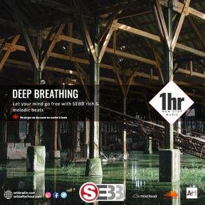 Deep Breathing (SEBB's Deep Progressive House mix)
