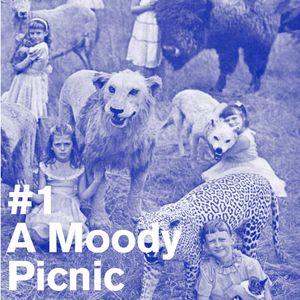 A Moody Picnic