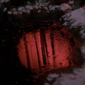 The Death of Twin Peaks