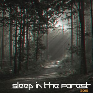 Gomez92 - Sleep In The Forest 2016
