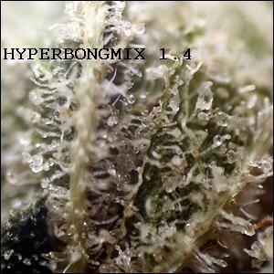 HYPERBONGMIX 1.4