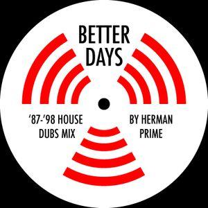 Herman Prime - Better Days mix (2010)