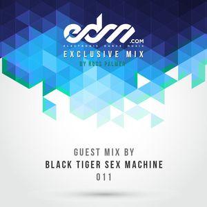EDM.com Exclusive Mix 011 - Black Tiger Sex Machine & Kannibalen Records Guest Mix