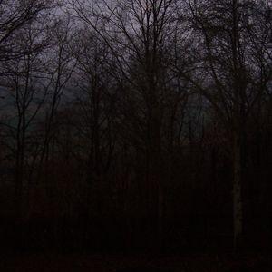 Darkened Shades # 47