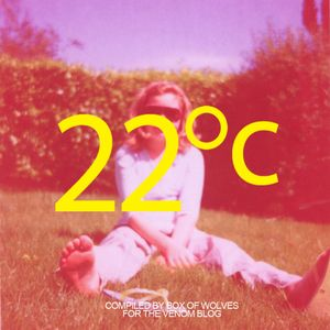 22 Degrees Celsius (MIX)