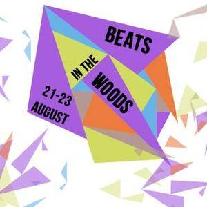 Wil 'M' @ Beats in the Woods Weekender 2015