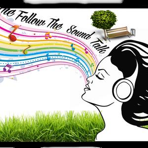 The Follow The Sound talk