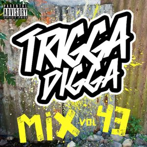 TRIGGA DIGGA MIX VOL. 43