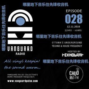 VANGUARD RADIO Episode 028 with TEKNOBRAT - 2016-11-12th CHUO 89.1 FM Ottawa, CANADA