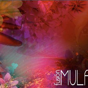 Fusión Mulata 7 verano