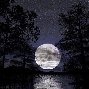 Moonlight Nights Ep4